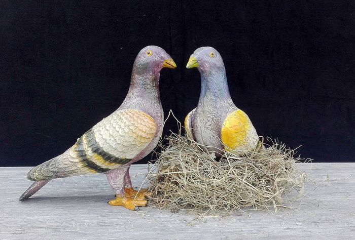 Couple colorful cast iron pigeons - Cast iron - China - Late 20th century