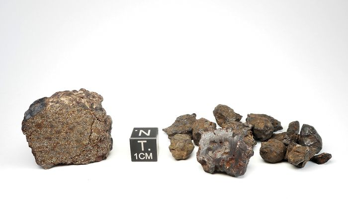 Set of Chondrite and Pallasite meteorites! - 59.9 g