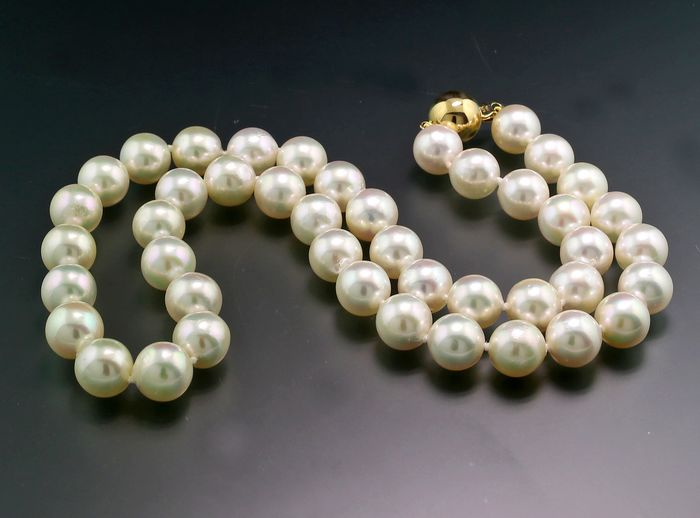 NO RESERVE PRICE - 14 carats Or jaune - Collier Perles de culture Akoya blanches JAPAN 9 mm blanches Haute Qualité