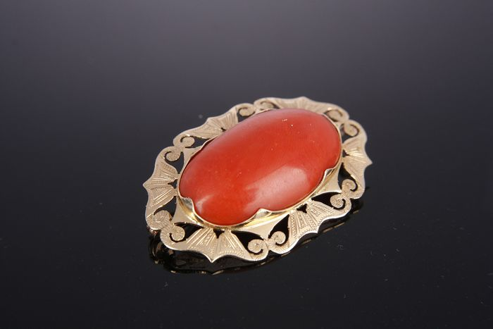 14 kt. Yellow gold - Brooch Blood coral