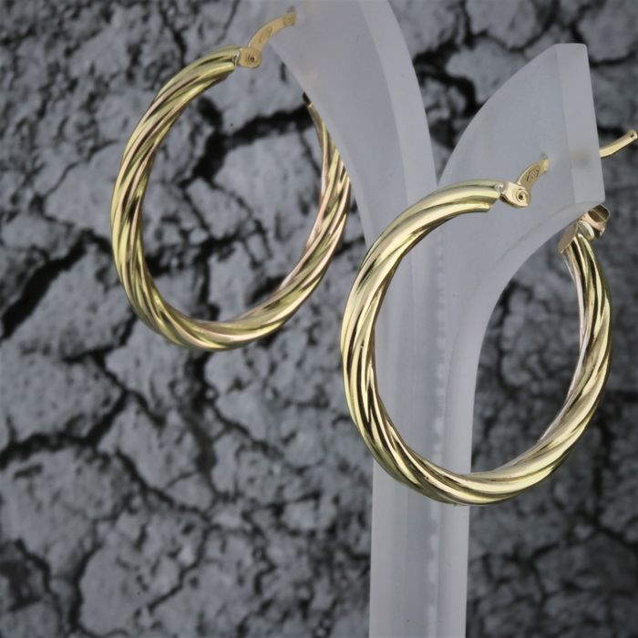 18 kt. Gold, Yellow gold - Earrings