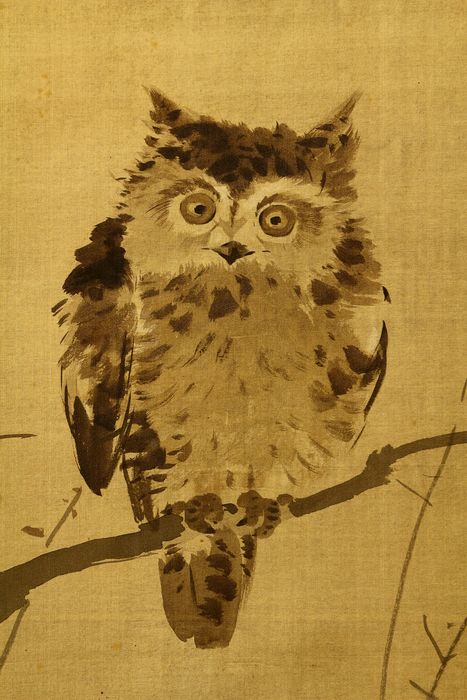 Bildrolle - Holz, Papier, Seide - Owl on tree - With signature and seal 'Gojo' 五城 - Japan - Anfang des 20. Jahrhunderts
