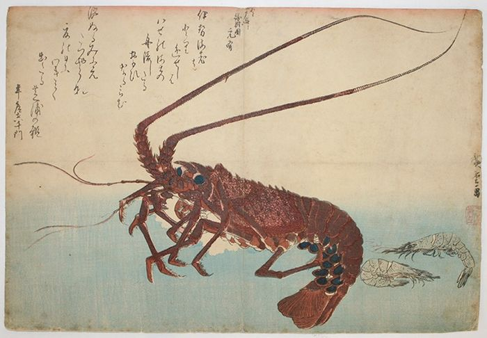 Original woodblock print - Utagawa Hiroshige (1797-1858) - Lobster and shrimp - From an untitled series known as Large Fish - 1832-33