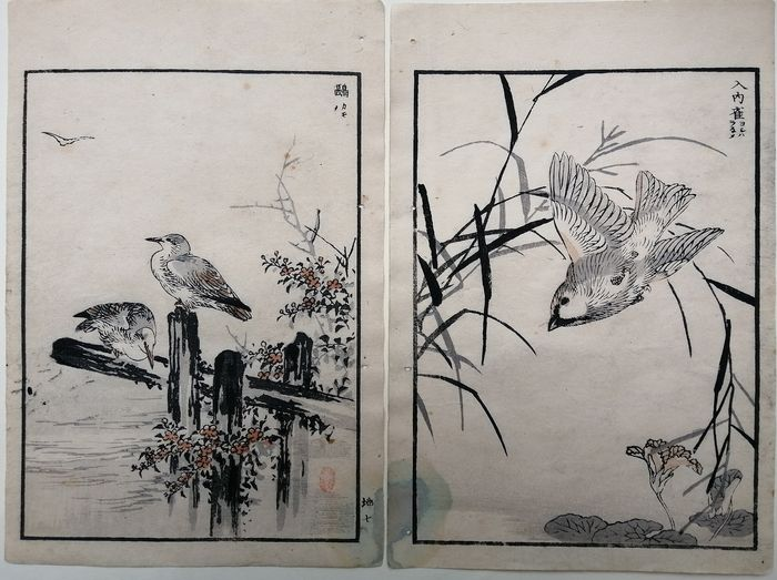 "Original woodblock print double-page illustration - Kono Bairei (1844-1895) - ""Bairei hyakucho gafu"" 楳嶺百鳥画譜 (Bairei's Album of One Hundred Flowers and Birds) - 1881"