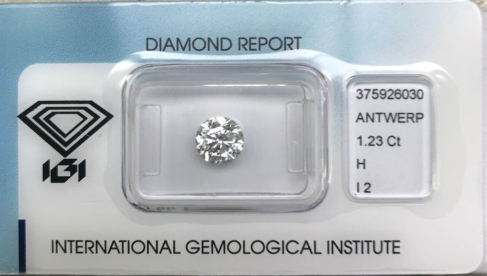 1 pcs Diamant - 1.23 ct - Briljant - H - P2