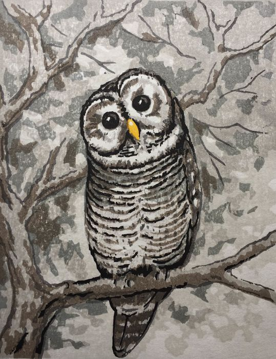 Origineel houtblok print (1) - Fu Takenaka (b. 1945) - Happy owl. Signed and numbered in pencil by the artist 13/27 - Heisei-periode (1989-2019)