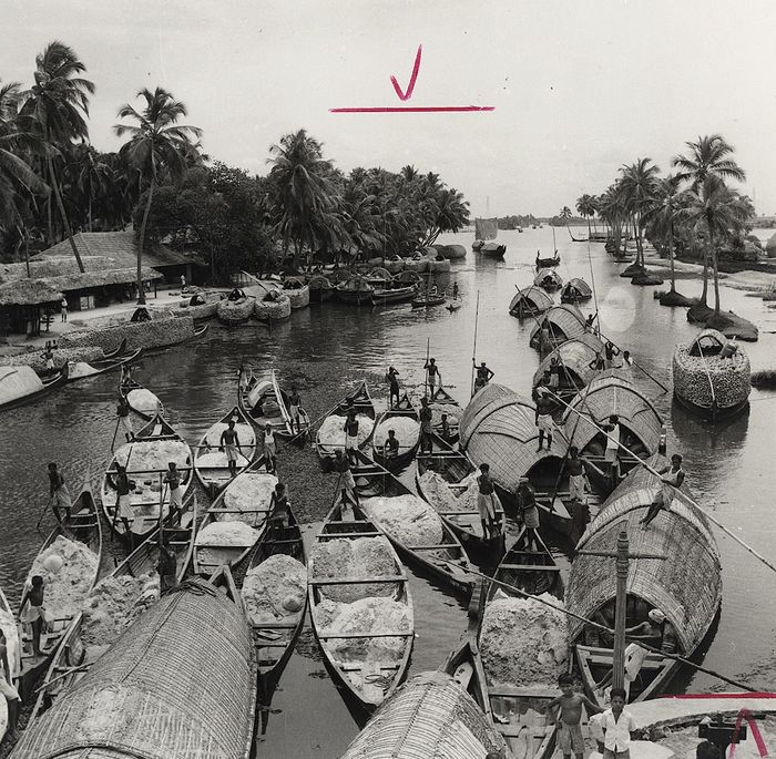 T.S. Nagarajan (1932-2014)/Government of India Tourist Office - Boats Cruising the Backwaters of Kerala, 1976