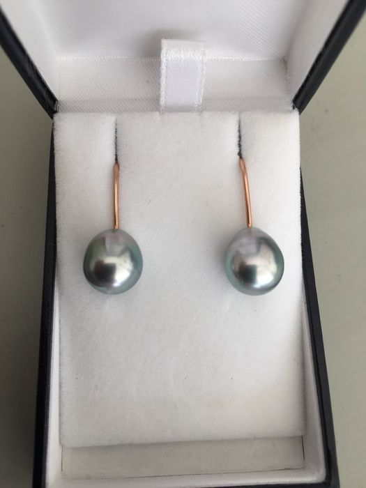 18 kt. Tahiti pearls - Earrings