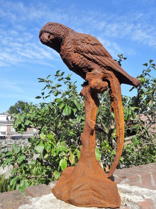 Macaw on branch - 36 cm - Iron (cast/wrought) - 20th century