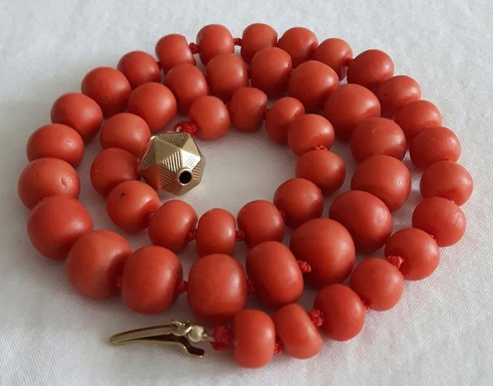 14 kt. Yellow gold - Necklace - Thick blood coral from 9.32-11.77 mm