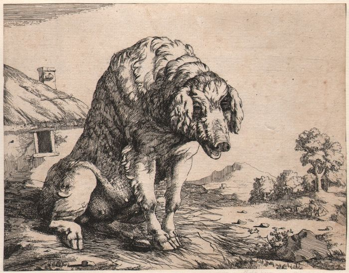 Paulus Potter (1625-1654) -  A sow in a farmyard,  Etched by De Bye