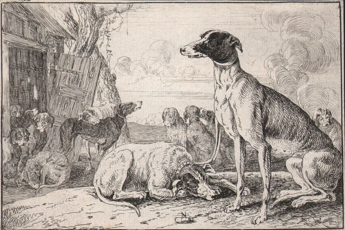 Jan Van Hecke (1620-1684)  - A dog-kennel