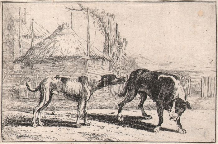 Jan Van Hecke (1620-1684)  -  A dog sniffing at a bitch