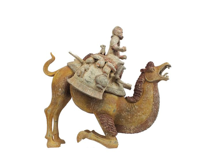 Mingqi, A Masterpiece - Terracotta -  Rare Large Pottery Crouching Bactrian Camel and Sogdian Rider with Lynx - H 48 cm., L 51 cm. TL  - China - Tang Dynasty (618-907)