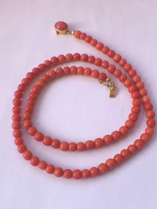 18 kt. Gold - Necklace coral