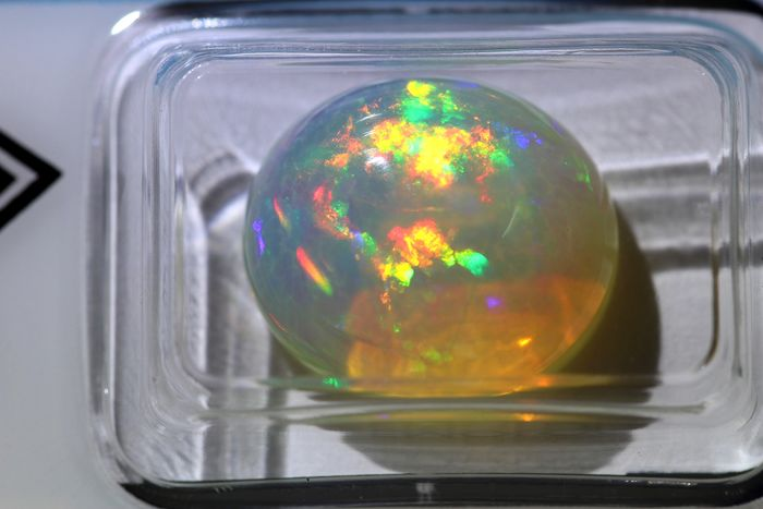 Multi-colored - Opal - 8.24 ct