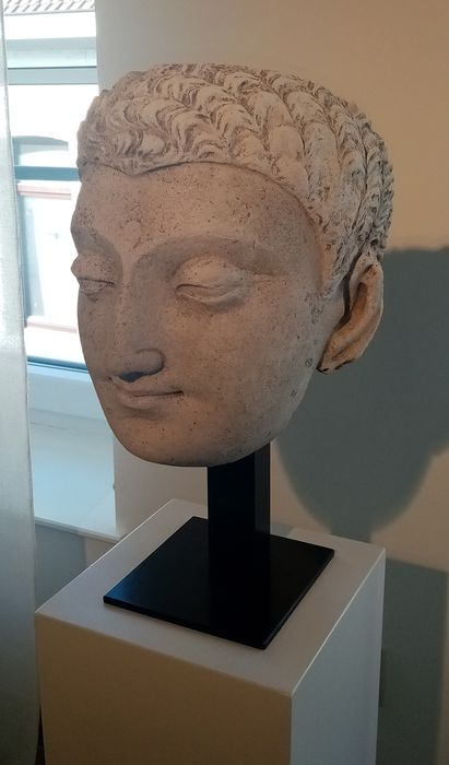 Gandharan stucco head - Stucco - Important Gandharan stucco head - Pakistan - 3th - 5th century AD
