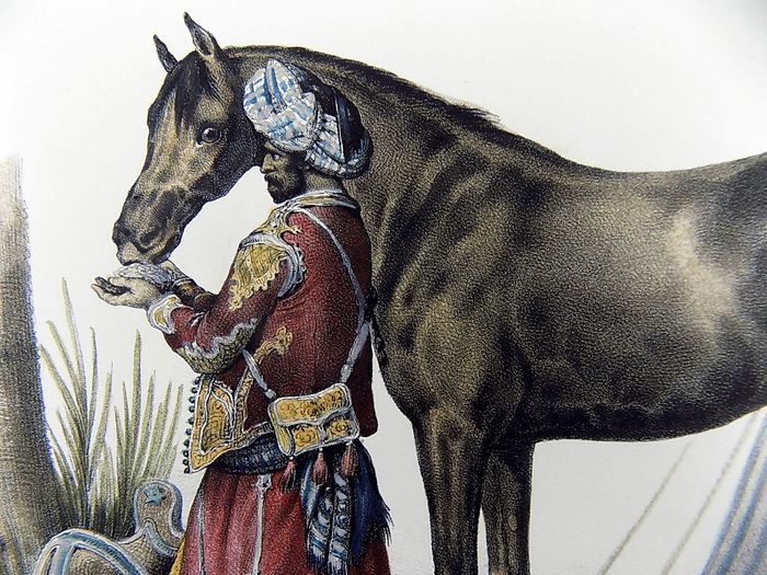 Gottfried Honneger (18th/19th C. Early Swiss); Folio stone lithograph French mannier - Arabian Horse from Abdiar Rave - Fine hand colour
