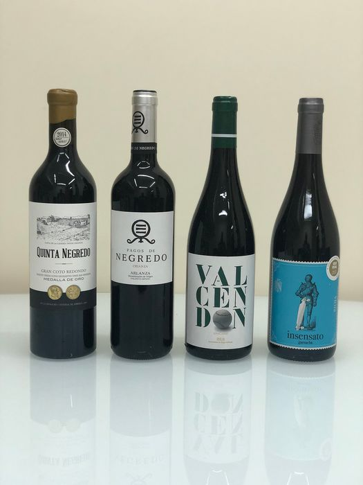 Lot of Red Wines - La Rioja, Arlanza - 36 Flessen (0.75 liter)