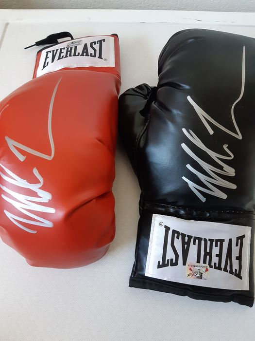 Everlast - Boxing - Mike Tyson - Boxing gloves