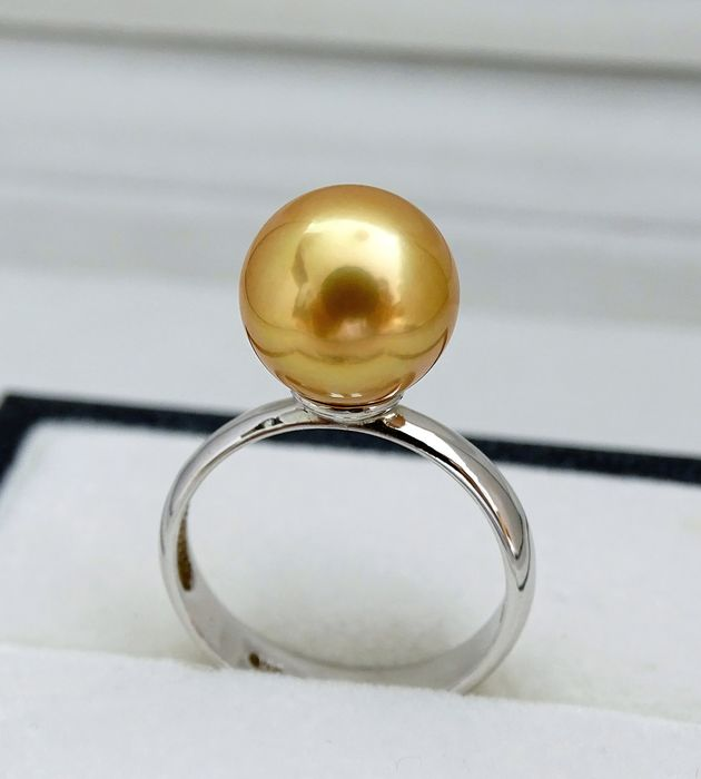 Ring Size Selectable Golden south sea pearl, Rare Premium Natural 24K Golden Saturation 10.85 mm - Ring, 925 Sterling Silver