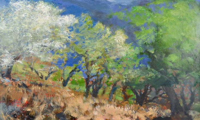 Bruce Killeen (1926-2014) - Almonds and olives