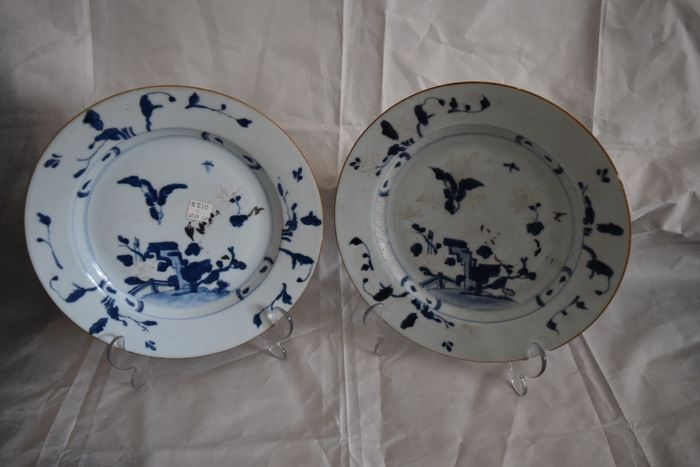 Plates (2) - Porcelain - Nanking cargo The plantain pattern painted with an insect in flight - China - 18th century