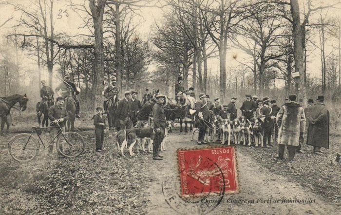 France - Deer hunt - various hunting scenes with regard to the hunting of deer - dogs, horses and initiation - 88x postcards - period: 1910-1940