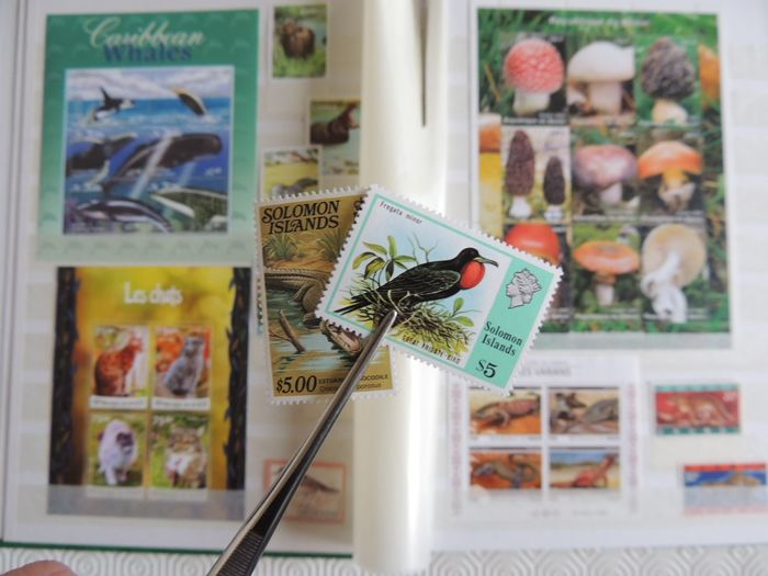 Fauna - Natur - Collection of MNH stamps and series in a binder