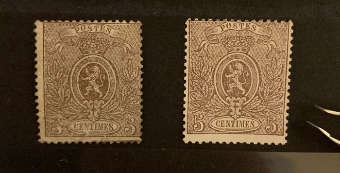 Belgium 1866/1867 - Small Lion - 5c brown - nuances - OBP / COB 25a & 25b