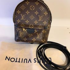 Louis Vuitton - Mini Palm Springs Backpack