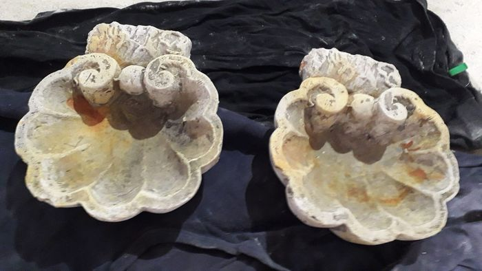 Pair of holy water stoups with shells - Stone powder - Last quarter 20th century