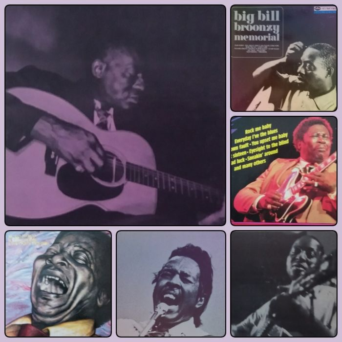 Various Artists/Bands in Blues, Big Bill Broonzy, B.B. King, John Lee Hooker, Clifton Chenier & Rocking Dopsie - Multiple artists - Nice collection of Blues ( Delta, Country and Louisiana blues) and Zydeco albums - Multiple titles - LP's - 1965/1983