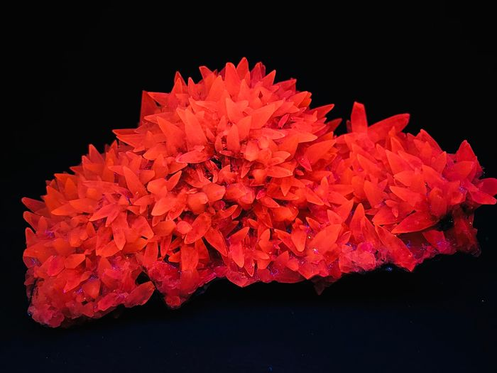 Perfect shaped dogtooth calcite Fluorescent - 10.5×7.5×5.5 cm - 308 g - (1)
