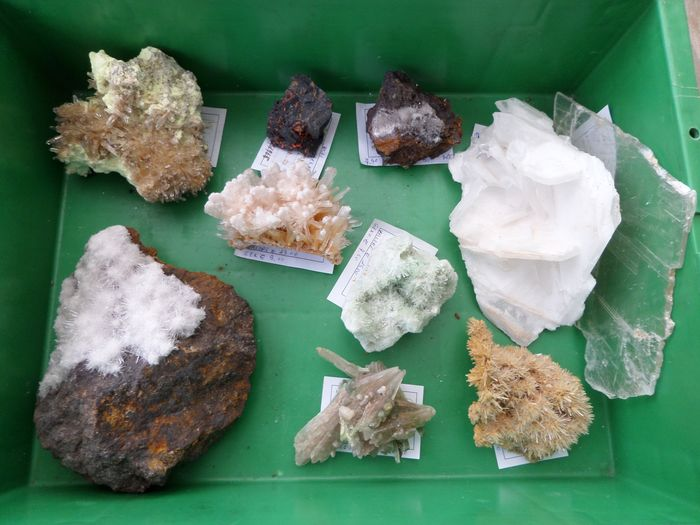 Collection of minerals from the world. - 2.7 kg - (10)