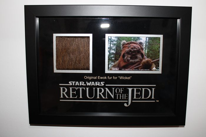 "Star Wars - Return of the Jedi - Movie Prop - Original Ewok Fur for ""Wicket"" - Framed Display - with COA Propstore"
