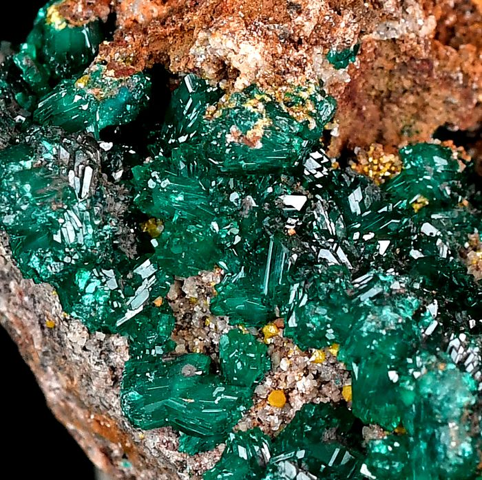 Wonderful Dioptase and Wulfenite from Dr Congo - 9.9×6.5×4.1 cm - 340 g