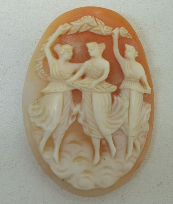 "Cameo avec ""The Three Graces"" (1) - coquillage"