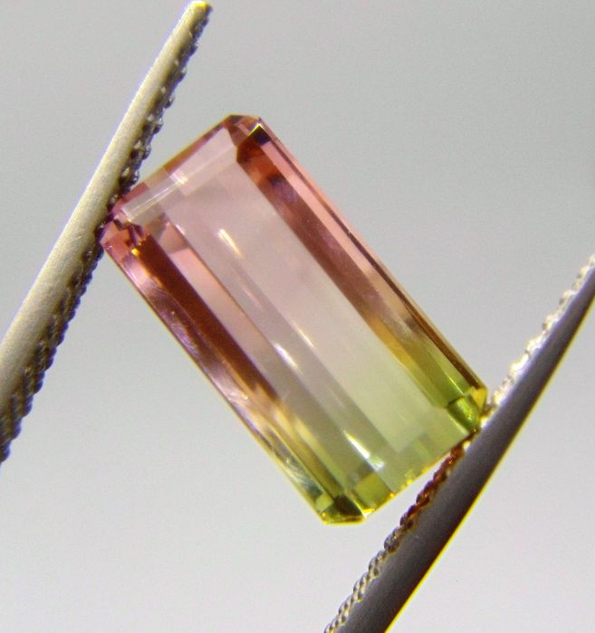 Bi-Color Tourmaline - 2.52 ct