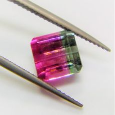 Bi-Color Tourmaline - 3.09 ct