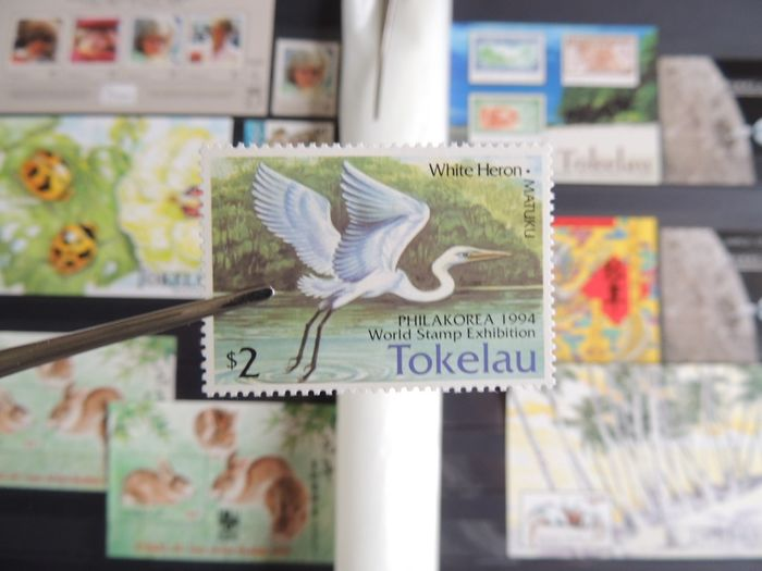 Tokelau 1953/2003 - Advanced series collection on binder sheets