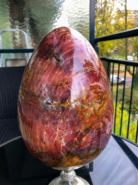 Kwarts Fine Large unique Polished Petrified wood egg - 27×27×18.63 cm - 12180 g