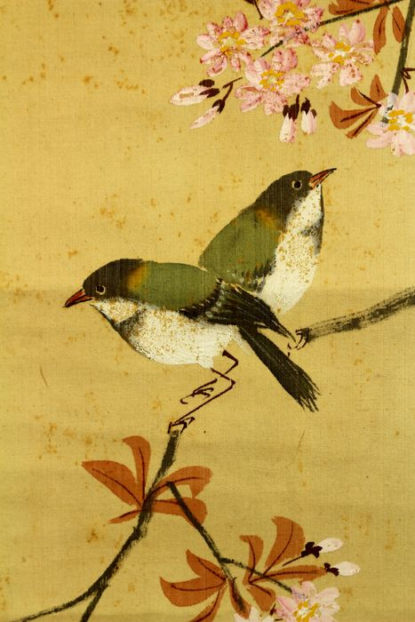 Pintura de pergamino colgante - Seda - 'Kingetsu' 琴月 - Birds on sakura tree - With signature and seal 'Kingetsu' 琴月 - Japón - ca 1930-40 (principios de Showa)