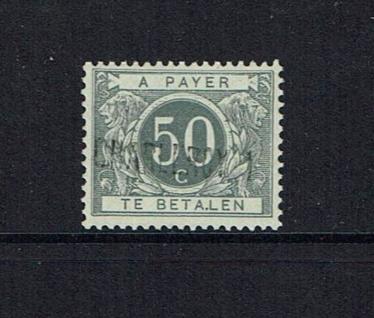Belgium 1919 - 50 cent - With 'Charleroi' overprint and variety 'Betalen' - OBP / COB TX.16A-V