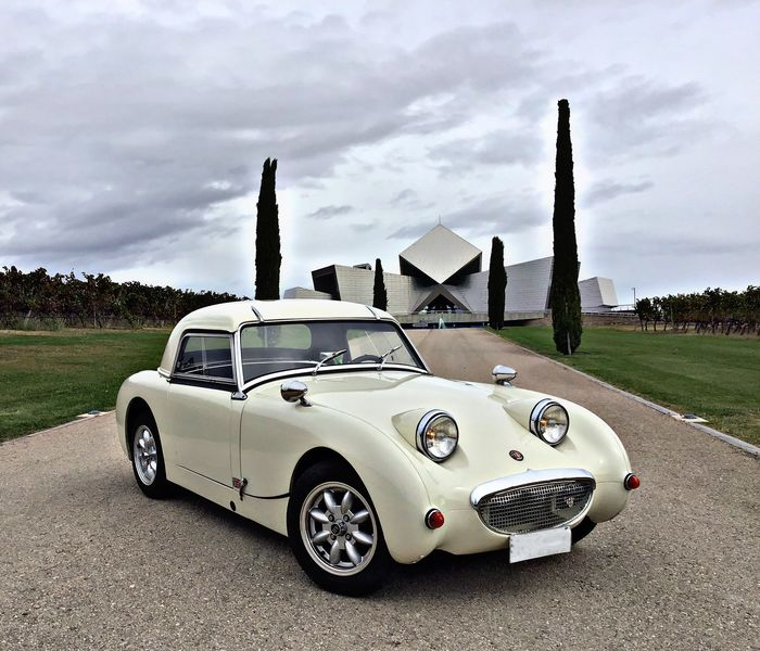 Preview of the first image of Austin Healey - Sprite MKI - NO RESERVE PRICE - 1960.