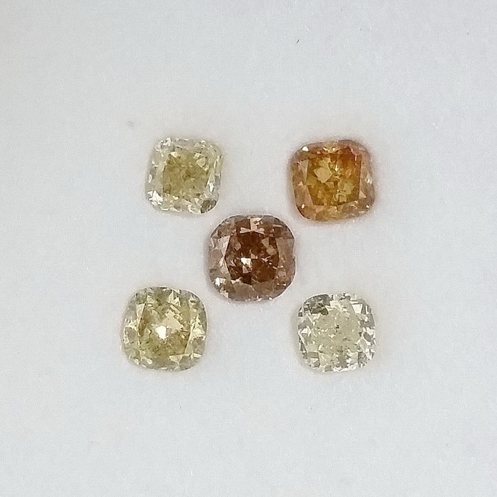 5 pcs Diamants - 1.03 ct - Coussin - Natural Fancy Mix Colors - I1, I2, SI3, ***No Reserve Price***
