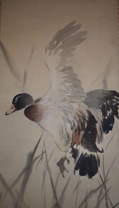 Pergamino colgante - Seda - Duck in flight and reeds - With artist's signature and seal - Japón - ca 1930-40 (período temprano de Showa)