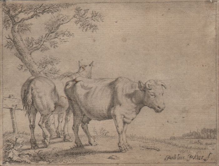 Paulus Potter (1625-1654) - A cow and a horse -  By Johan Bijlaert