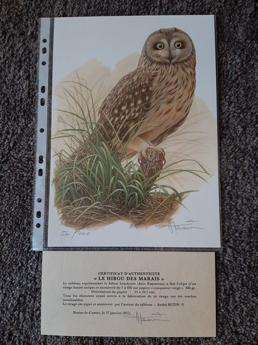 Belgium - A. Buzin birds (various cards and drawings with limited edition)