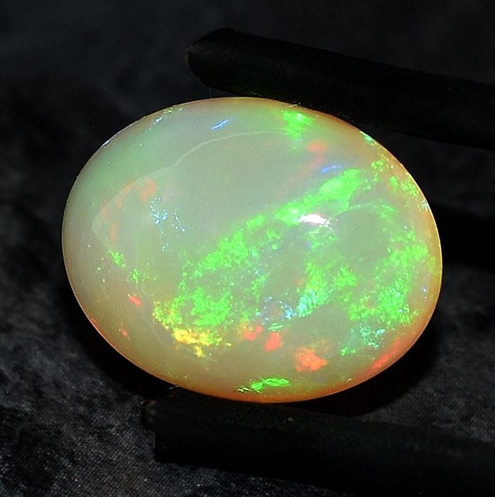 No Reserve Price - Opal - 9.03 ct